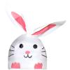 bunny-rosa